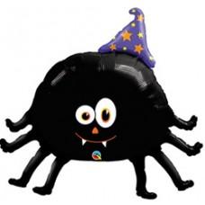 Araña con gorro